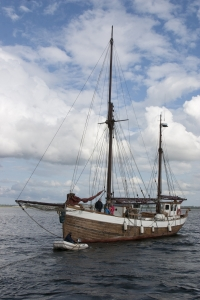 Segler auf dem Limfjord