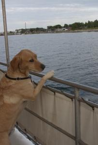 Lasko denkt auf dem Schiff