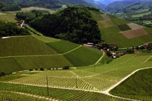 Landschaft bei Durbach