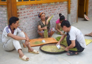Reisbearbeitung