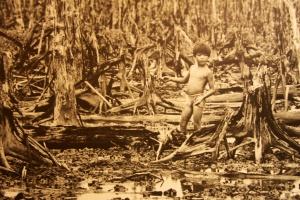 Bild aus dem War Remnants Museum in Saigon