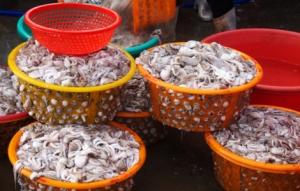Körbe voller Meeresfrüchte