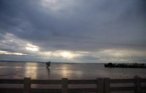 Überflutete Reisfelder in Kambodia
