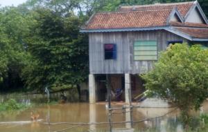Land unter Wasser - Kambodia