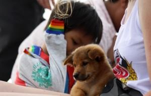 Mädchen mit Hundewelpen