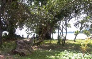 Phu Quoc -Picknick unter einem großen Baum in der Lagune