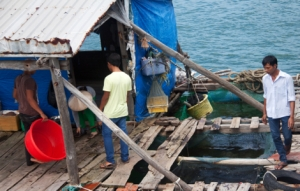 Fischverkäufer auf dem Meer