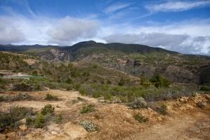 Arico - Barranco Tamayada