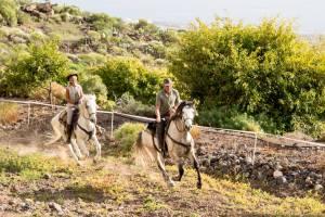 Western reiten auf Teneriffa