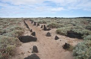La Dehesa - Sandwege an der Westküste