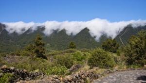 LLa Palma - Nationalpark_1