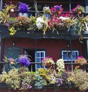 Blühende Balkone