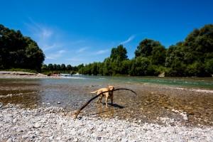 JULI - Lasko bei sommerlichen Temperaturen in der Isar