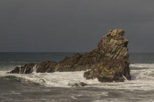 Seelöwen Fels in Taganana