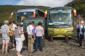 mit dem Bus auf Teneriffatour