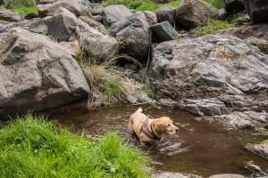 Lasko badet im Barranco Wasser