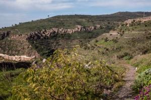 Weg durch einen Barranco zwischen El Cercado und Las Hayas