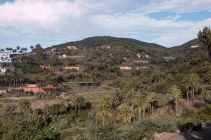 Las Hayas - 1000m - am Rand des Valle Gran Rey