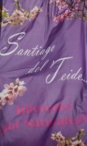 Santiago del Teide - Mandelblütenfest