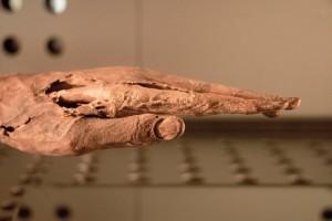 Museo de la Naturaleza y el Hombre - Guanchenhand