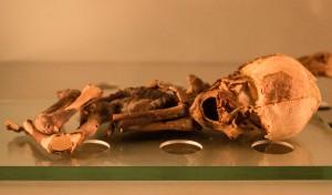 Museo de la Naturaleza y el Hombre - Guanche Foetus