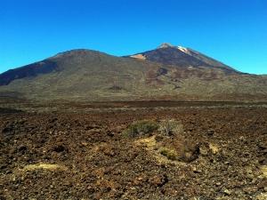 Geschafft - im Teide Nationalpark