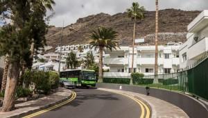 Die grünen Titsa Busse nehmen leider keiner Vierbeiner mit