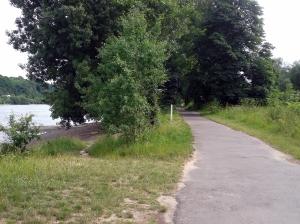 Grüne Radwege am Rhein entlang