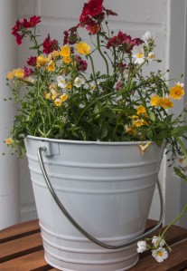Blumeneimer