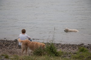 Wellness an Land und im Wasser