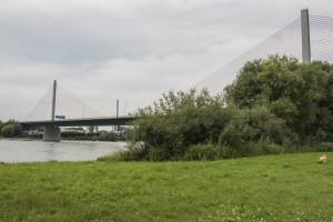 die Abschlussnote vor der Friedrich-Ebert Brücke