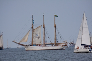 Hanse Sail_38