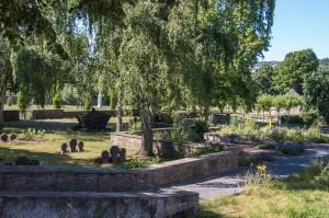 Alter Friedhof in der Stadt - Hund verboten - warum fragt sich nicht nur Lasko?