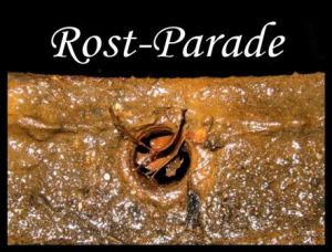 rostparade_logo