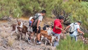 Jäger und Jagdhunde auf dem Guama