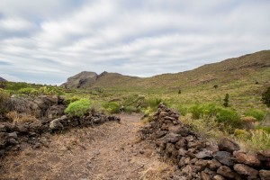 Camino Real vor El Modello