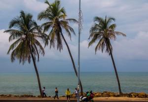 Cartagena - Karibik und Palmen
