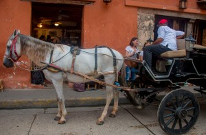 Cartagena - Pferdedroschke
