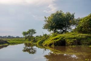 Mompox Bootstour - Flusslandschaft