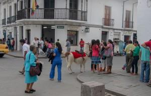 Popayán - belebte Straßen