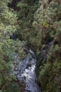 Fahrt von San Augustin nach Popayán auf einer Piste - wir fahren durch dichten Urwald und überqueren tiefe Schluchten