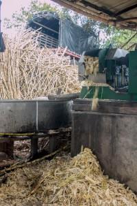 San Augustin - Zuckerrohrfabrik