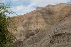 Tatacoa Wüste