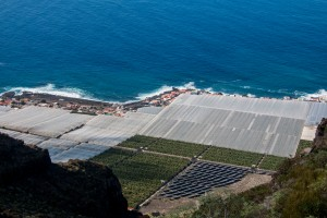 Blick auf Solar und Bananenfelder an der Küste - El Remo