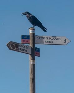 Wegweiser - Europawanderweg E7 - über Lissabon auf die kanarischen Inseln