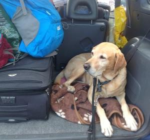 Lasko und Gepäck gut verstaut