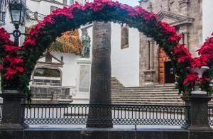 Santa Cruz de La Palma - Weihnachtsstern Bogen