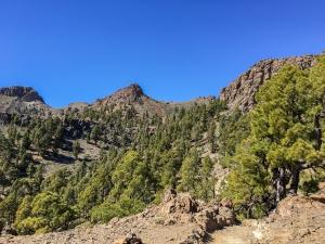 Blauer Himmel, Sonnenschein, Felsen und grüne Kiefern