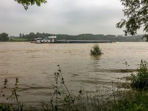 Der Rhein - ein Strom