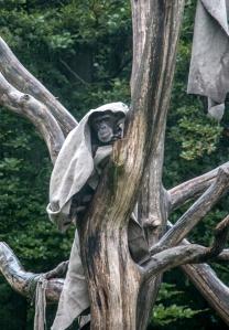 Affe mit Bedeckung - Regenschutz